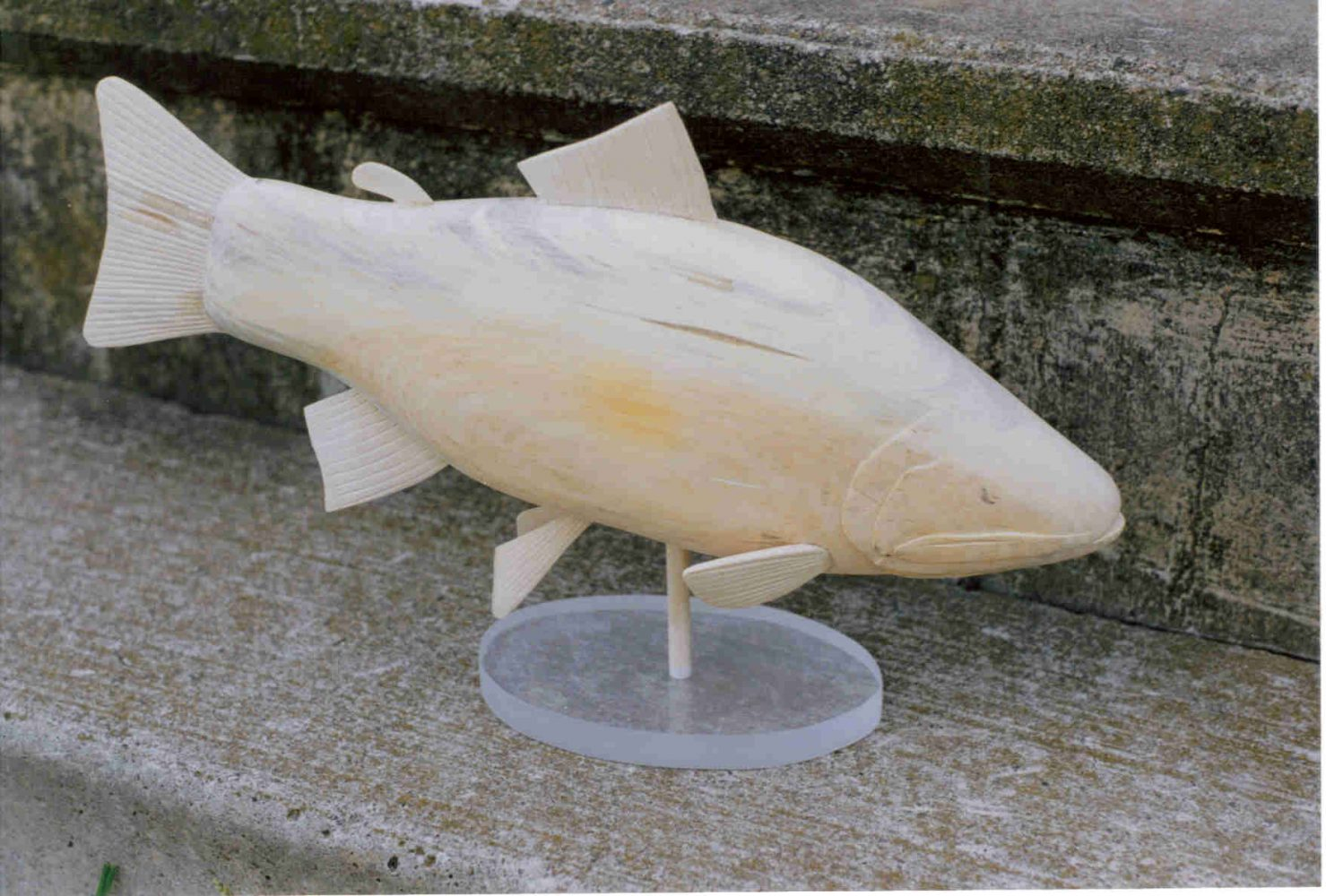 Aurora Trout - before paint by Bev Clark by Bev Clark