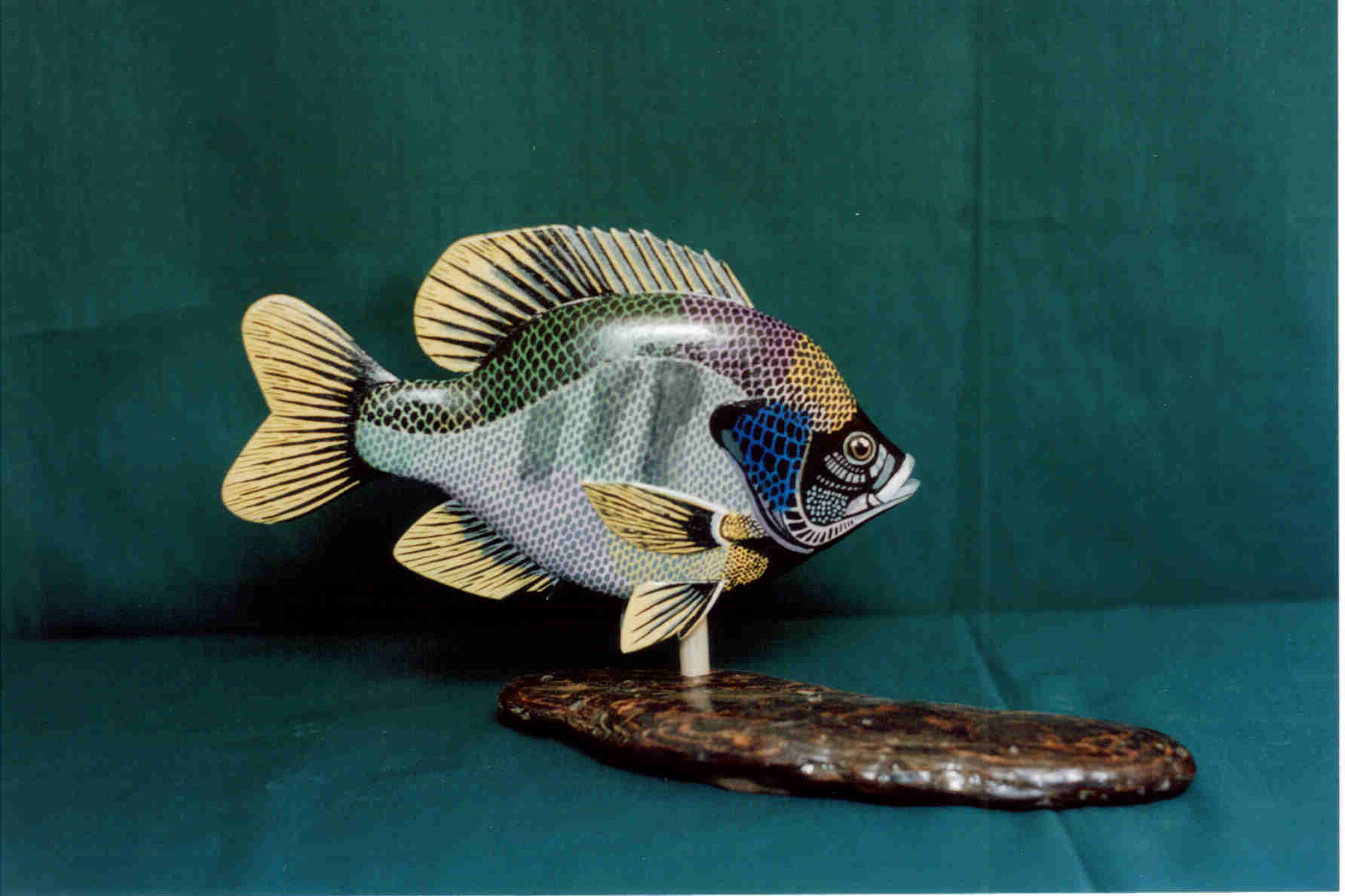 Bluegill by Bev Clark