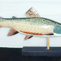 Brook Trout by Bev Clark