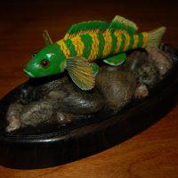 Green Darter by Bev Clark