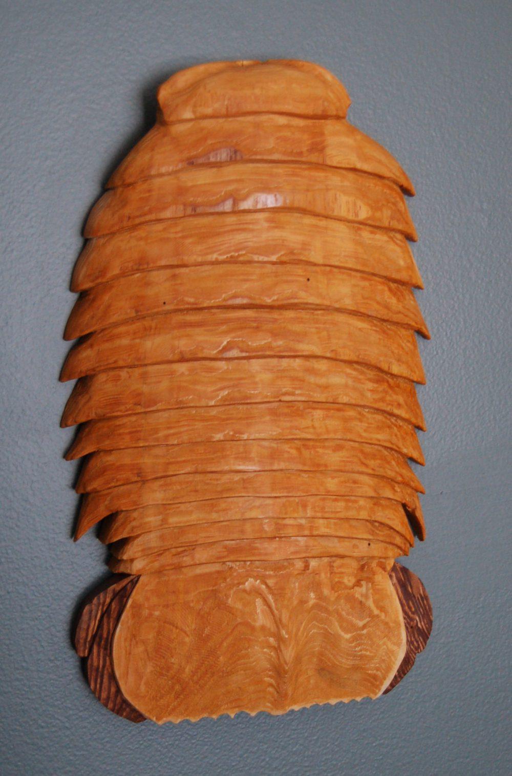 Isopod by Bev Clark