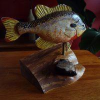 Redbreast Sunfish by Bev Clark