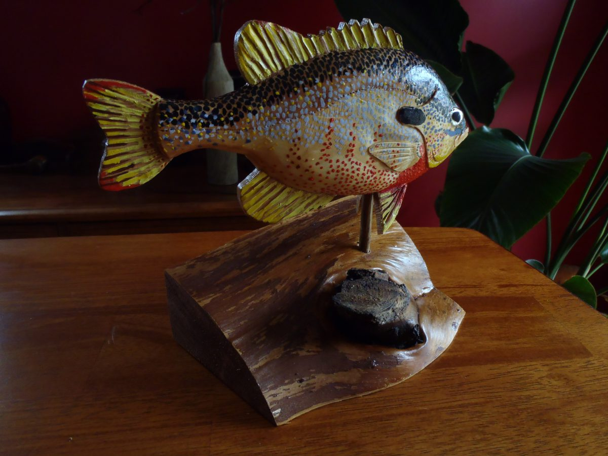 Redbreast Sunfish by Bev Clark