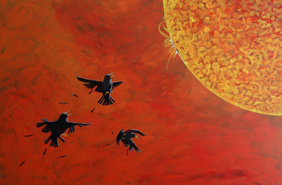 Wax Starlings by Bev Clark